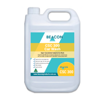 CSC 300 Car Wash Beacon Products